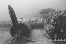 FIAT BR20M CICOGNA (sn MM.21503)